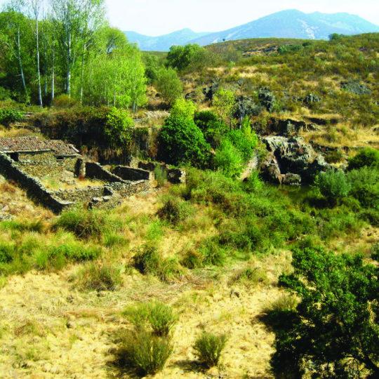 Ciudad de vascos - Casa Rural en Toledo